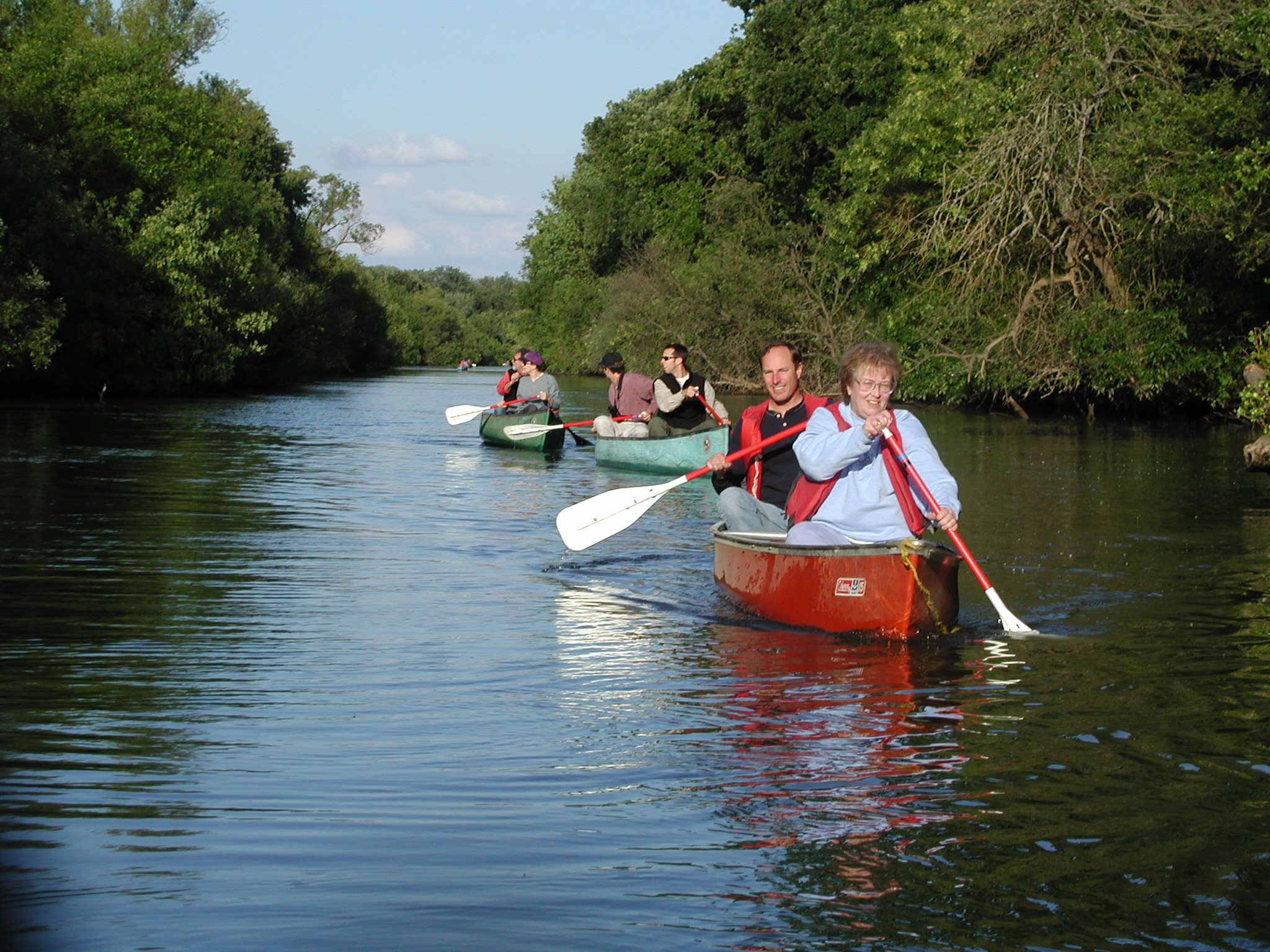 Guided Paddle Along the Cosumnes River