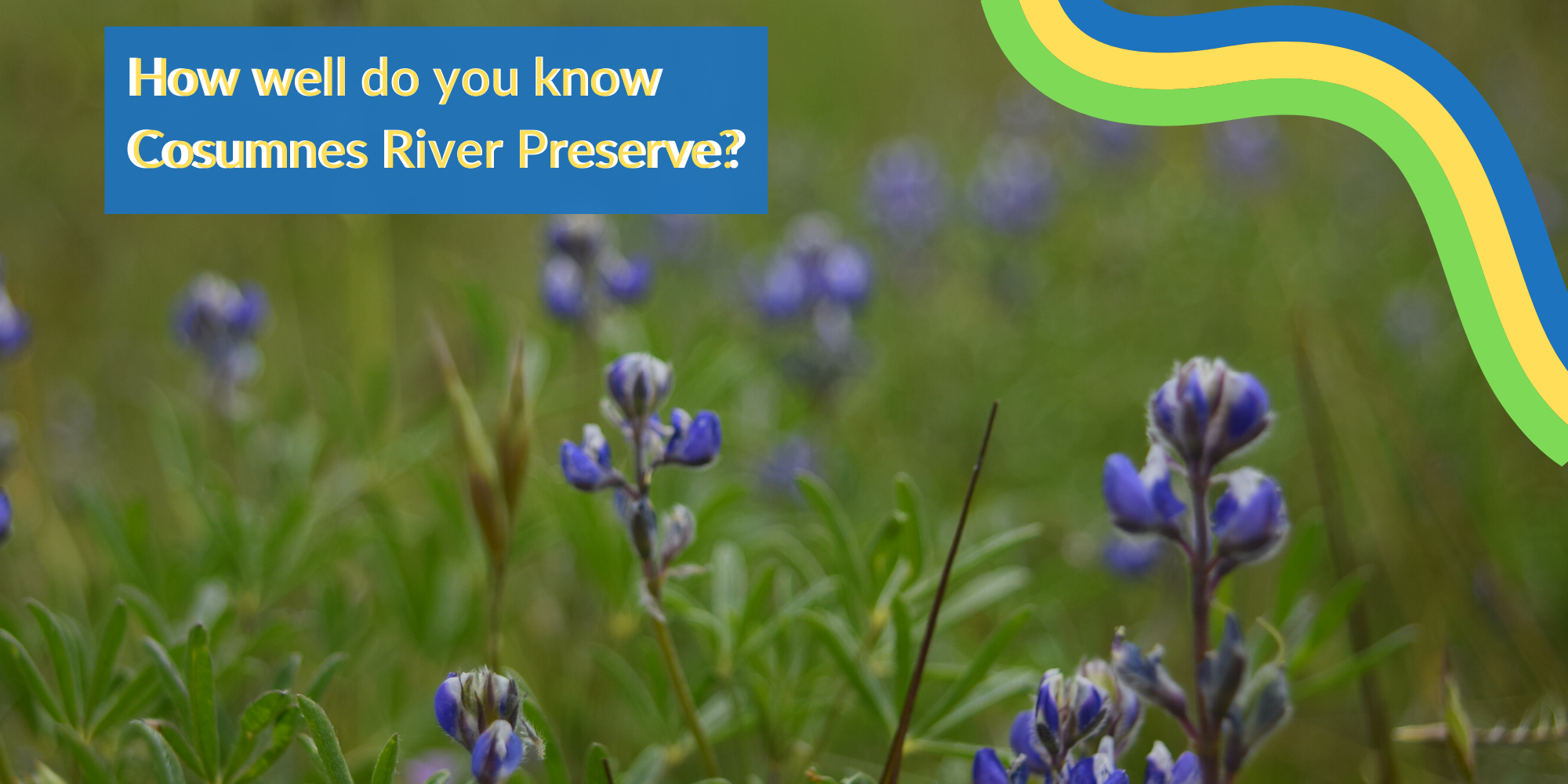 The Preserve has a rich history and an array of flora and fauna. Click to take a quiz and find out how much YOU know!