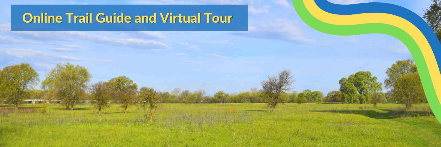 Click here to access our digital trail guide, maps, and virtual video tours!